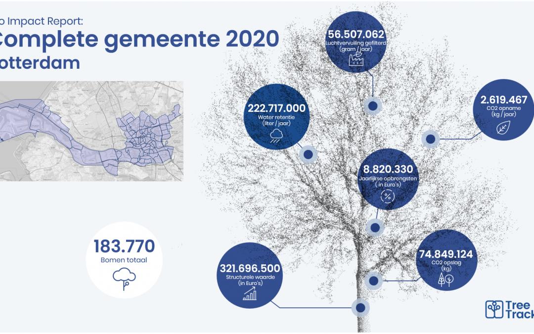 Updating tree information city of Rotterdam